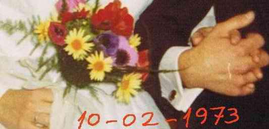 20100210163933-boda3.jpg