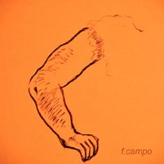 20111007123818-brazo1-copia.jpg