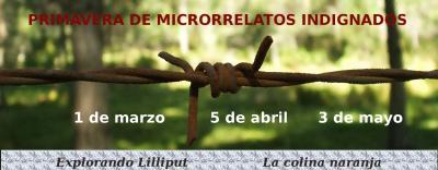 20120301071836-microrrelatosindignados.jpg